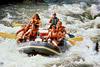 Тур в Индию. Сплав по реке Сутлеж