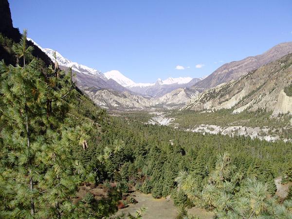 Путешествие к Анапурне. Непал