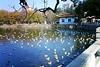Тур Китай: Юньнань – провинция вечной весны
