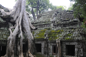 Камбоджа. Тур в Камбоджу