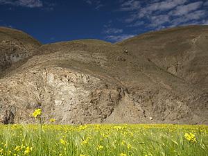 Тур в Непал и Тибет