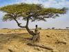 Тур в Эфиопию. Большое путешествие в Эфиопию