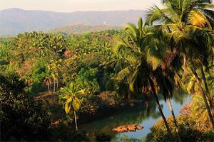Отдых в Гоа. Индия