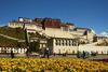 Корпоративный тур в Тибет