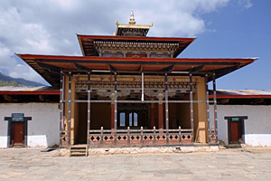 Тур в Индию и Бутан