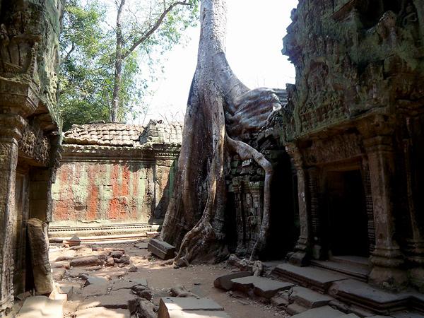 Храмы Камбоджи. Та Пром