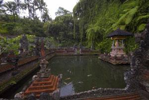 Индонезия. Тур по острову Суматра