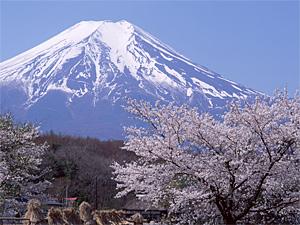 Тур в Японию. Фудзи - Хаконэ