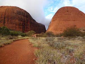 Тур в Австралию