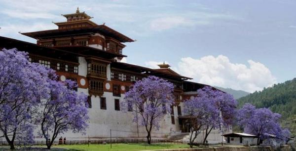 Бутан. Праздники