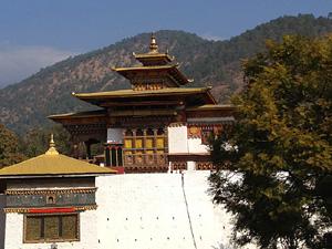 Тур в Бутан. Пунакха