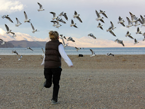 Екатерина Киреева - гид по Тибету, Кайлаш