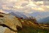Тур в Индию. Этнографический тур в долину Куллу, Гималаи