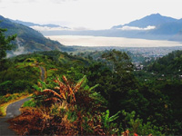 Традиции и культура Индонезии