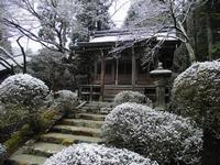 Тур в Японию. Цветение сакуры весной