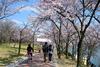 Тур на майские в Южную Корею