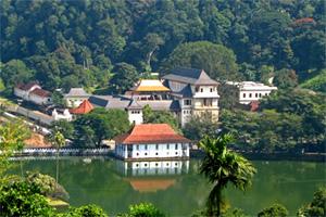Отдых, йога и цигун в Шри-Ланке