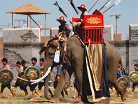 Культура Таиланда. День слона