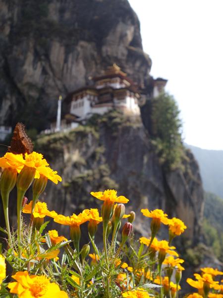 Тур в Бутан и Индию