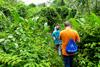 Тур в Перу. Джунгли Амазонии