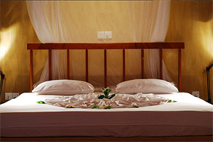 Аюрведа в Шри-Ланке. Отель Jetwing Ayurveda Pavilion