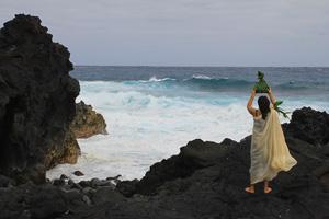 Новогодний тур на Гавайи