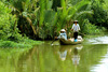 Тур во Вьетнам. Экскурсии по Хошимину и отдых в Фантьете