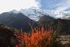 Треккинг к Аннапурне, Непал