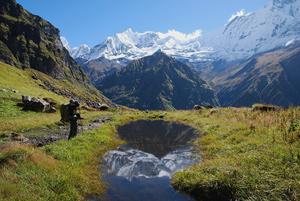 Тур в Непал. Трекинг вокруг Манаслу