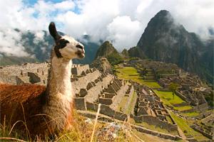 Тур в Эквадор, Перу и Чили