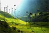 Экскурсионный тур в Колумбию