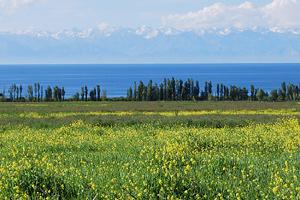 Тур в горы Памира и к озеру Иссык-Куль
