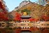 Тур в Южную Корею. Сеул