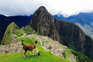 Тур в Перу и Боливию