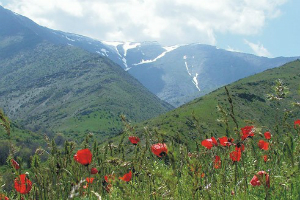 Тур в Нуратинские горы