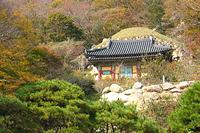 Тур в Корею на автобусе Кей-Шатл