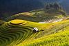 Тур в Северный Вьетнам