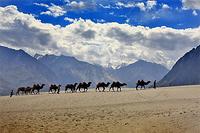 Индия. Тур в Гималаи