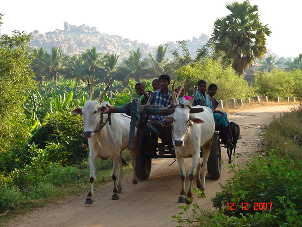 Тур в Южную Индию