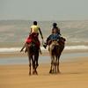 Тур в Марокко. Фото